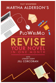Revise your Novel
