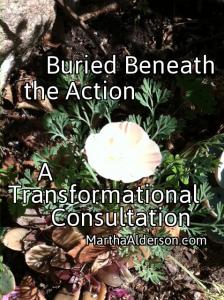 Transformational Consultation